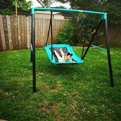 Toddler Swing Set, Swing Sets For Kids, Backyard Play, Backyard For Kids, Backyard Ideas, Best Swing Sets, Kids Play Area, Play Areas, Kids Room Design