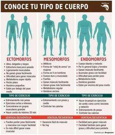 Ejercicio para tipos de cuerpo, ectomorfo, mesomorfo, endomorfo.