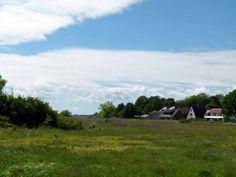 Impressionen von der Malreise nach Rügen | Motive auf den Boddenwiesen von Middelhagen (c) Frank Koebsch (2) #wirsindinsel! #rügen
