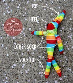 Sock bunny anatomy