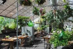 Restaurant in an old greenhouse at Terrain.