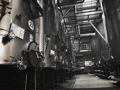 #wine #visitnapavalley #luxurytravel #travelpro #napa #bubbles # #travelwriter #lindenwarrah #hotel #milawa #morning #breakfast #lacetto #trip #buenvino #winetime #vinho #bodega #gastronomia #vinos #gastronomy #alicante #winelovers #blog #winetasting #california by danny.ewing