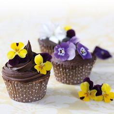 Maak met dit recept cupcakes met een heerlijke chocolade ganache toef! De basis van de cupcakes maak je met de FunCakes mix voor Cupcakes.