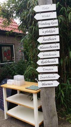 bij de Zelfpluktuin tussen Oudeschild en Den Burg hebben ze zoveel moois en lekkers