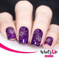 Nail Art Stamping Plates - Whats Up Nails Stamping Plates, Nail Stamping, Easy Nail Art, Cool Nail Art, Natural Beauty Tips, Natural Hair Styles, Beauty Care, Diy Beauty, Nailart