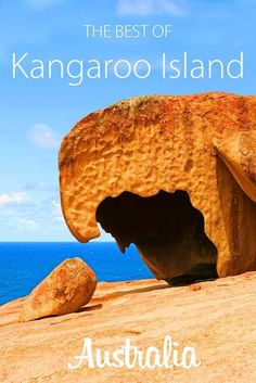 nice Full journey information to Kangaroo Island: itinerary, prime actions, and accommo...