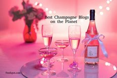Top 40 Champagne Blogs and Websites for Champagne Lovers