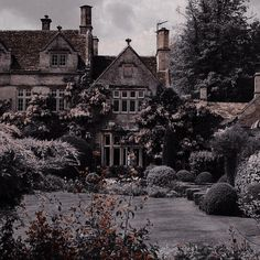 Princess Aesthetic, Character Aesthetic, Aesthetic Photo, Aesthetic Pictures, Landscape Edging Stone, Vampire Pictures, Dark House, Travel Humor, Scenery