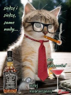 Birthday Sentiments, Memes, Diy And Crafts, Humor, Funny, Miu Miu, Asia, Dance, Jokes