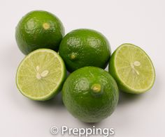 Key Lime - Search by flavors, find similar varieties and discover new uses for ingredients @ preppings.com