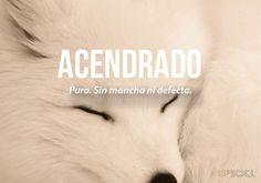 20 palabras más bonitas del idioma español (II) Acendrado.