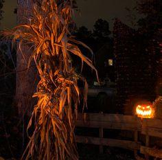 halloween hay rides las vegas