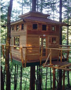 Treehouse in Oregon! bed and Breakfast near redwood forest in Southern Oregon. Each house has it's own theme