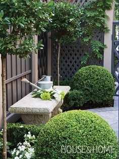 The spherical shrubs in this French-inspired garden make a handsome statement. | Photographer: Ted Yarwood | Designer: Thomas Sparling