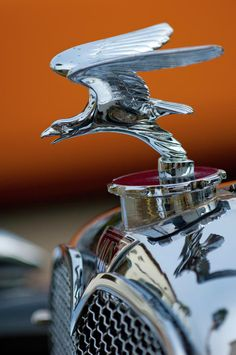 Vintage Hood Ornaments Photos - 1932 Alvis Hood Ornament 2 by Jill Reger Retro Cars, Vintage Cars, Antique Cars, Vintage Signs, Car Badges, Car Logos, Car Bonnet, Car Hood Ornaments, Radiator Cap