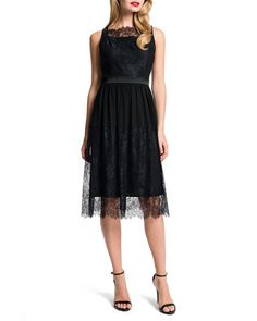 T8V3X Cynthia Steffe Aria Satin-Banded Lace Dress, Black