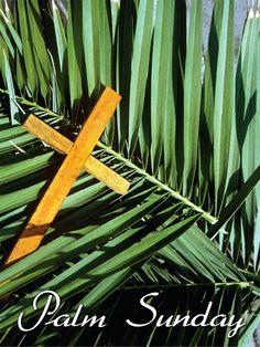 Palm zondag