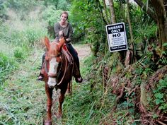 If you haven't took a horse back ride through the rain forrest of Hawaii, put that on your list of things to do before you die.