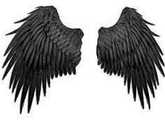 Resultado de imagem para angel wings back view Maleficent Wings, Png Tumblr, Wings Png, Bird Wings, Black Angel Wings, Fallen Angel Wings, Kurama Naruto, Wings Drawing, Tatoo