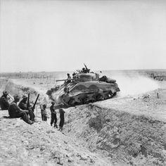 A Sherman tank crosses an anti-tank ditch during the advance through the Gabes Gap, 6-7 April 1943.