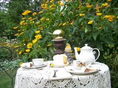 Tea for two at the garden