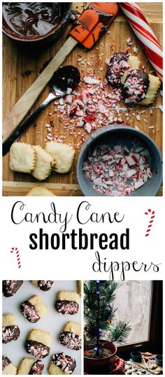 travel through the seven levels of the Candy Cane Forest with these Candy Cane Shortbread Dippers!