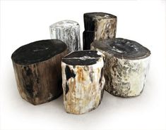 Hudson furniture petrified wood stump side tables