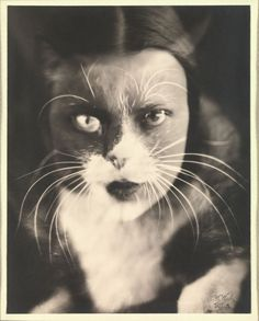 William Henry Fox Talbot ~ silver print, 1932, Metropolitan Museum of Art.                                                                                                                                                     More