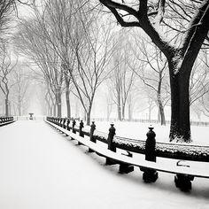 Josef Hoflehner, Snow Capped Central Park, Study 3 - New York City, NY, 2011