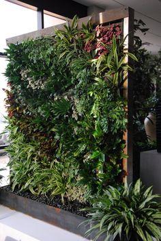 geschmückte grüne wand zimmerpflanzen holzgitter