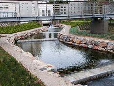 Πλατεία ΠηγώνΣκάλα, Λακωνία2009 - 2015ΔημόσιοΟλοκληρώθηκε5600 τ.μ.Η Utopia landscapes σχεδίασε το σύνολο των χώρων της Πλατείας Πηγών, της κεντρικής πλατείας της πόλης της Σκάλας στη Λακωνία. Στο σημείο αναβλύζουν πηγές, όπως υποδηλώνει και το τοπωνύμιο. Η περιοχή λοιπόν, παρ' ότι αστική, αποτελεί ένα πολύ ευαίσθητο φυσικό υδάτινο οικοσύστημα.Η βασική ιδέα σχεδιασμού επικεντρώθηκε στην προστασία και στην ανάδειξη του φυσικού οικοσυστήματος, μετατρέποντας το ταυτόχρονα σε χώρο συνάθροισης Central Square, Urban Design, Fresh Water, Greece, Mansions, Landscape, House Styles, Nature, Delicate