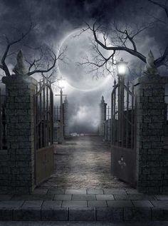 Moon Cemetery Halloween Backdrop - 730