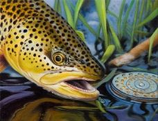 A D Maddox. Does some of the most incredible trout/fishing art available.
