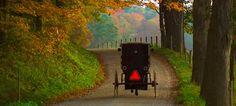 http://www.AmishCountryInsider.com/