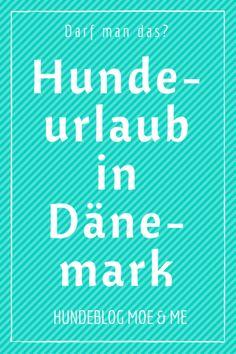 Darf man das? Hundeurlaub in Dänemark