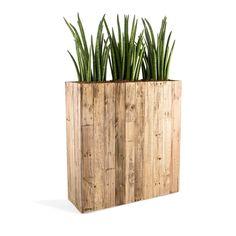 "Raumteiler ""Woodline High Box"" Dark Flame Wood Rechteckig 100x93.5x33.5cm - F475: Amazon.de: Garten"