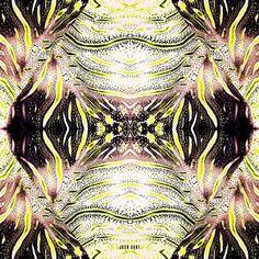 Resort 2012 Reptile scarf by Josh Goot