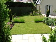 Garden Design For Families solanum jasminoides - | p l a n t s | pinterest | potato vines