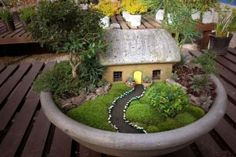 Tabletop gardening: fairy cottage bowl