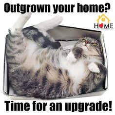 Real Estate - What to do when you find your living quarters have become too cramped.