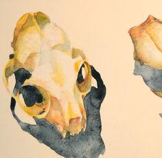 http://clelia.org/cranes aquarelle crâne de chat