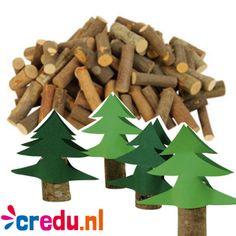 Houtstaafjes - http://credu.nl/product/houtstronkjes-1-kg/