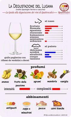 Lugana - Guided tasting at Lugana Wines - Quattrocalici.it - WordPress Sitesi Sweet Champagne Brands, Sweet White Wine, Wine Tasting Party, Wine Guide, Italian Wine, Italian Lunch, Cheap Wine, In Vino Veritas, Wine Drinks