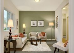 Green accent wall - for office?