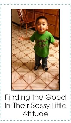 Sassy Little Toddler: Finding the good in their sassy little attitude - Have you seen this video?  This little guy is hilarious.