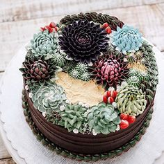 Succulent Cakes That Will Make You Drool + A Tutorial Just For You