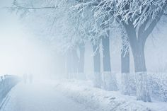 Here is the collection of stunning photographs from the very talented young photographer who is based in Yaroslavl, Russia. Check out some of his amazing and colorful shots below. Stunning Photography, Winter Photography, Winter Photos, Amazing Pics, Winter Time, Mists, Scene, Clouds, Snow