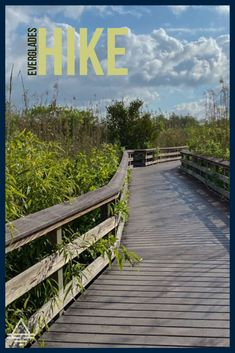 Fun hike in Everglades National Park. Everglades Anhinga Trail - TRIPS TIPS and TEES #everglades #florida Everglades National Park, Amazing Adventures, Trail, National Parks, Deck, Hiking, Florida, Outdoor Decor, Fun