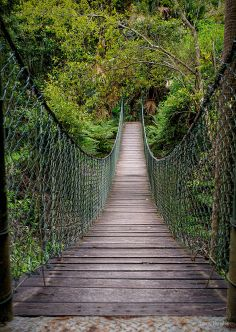 A Google+ friend posted this great looking suspension bridge. I love walking across these bridges.