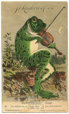 Art And Illustration, Frosch Illustration, Vintage Illustrations, Animal Illustrations, Vintage Prints, Vintage Posters, Vintage Art, Vintage Stuff, Photo Deco